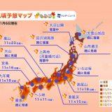 2019年最后更新!全日本各地红叶观赏全攻略(加映:银杏黄叶情报)