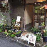 【京都】下京区漫步(2)到寺院里来一餐京料理!去京町家逛杂货