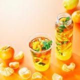 立顿推出期间限定新饮品柑橘水果茶系列!喜欢橘子的朋友千万不要错过哦!