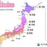 【2020年日本樱花预测前线】日本赏樱现在开始准备!(持续更新 各地开花预报 )