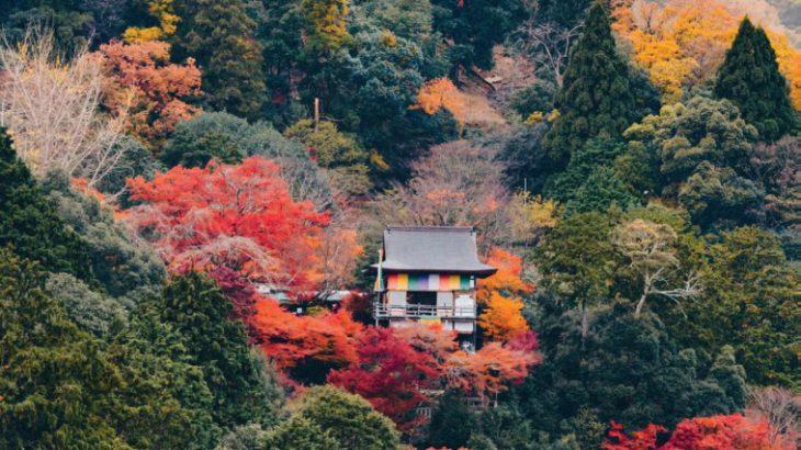 高山和滑雪,日本人拥抱自然背后的小故事