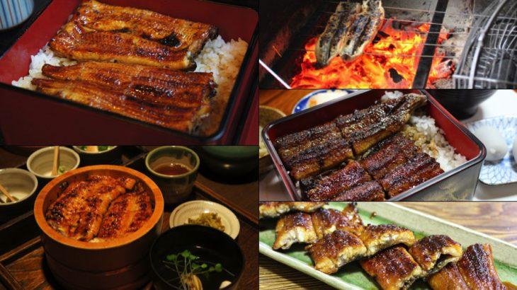 【日本鳗鱼饭】张维中:旅途上,令人难忘的美味鳗鱼饭