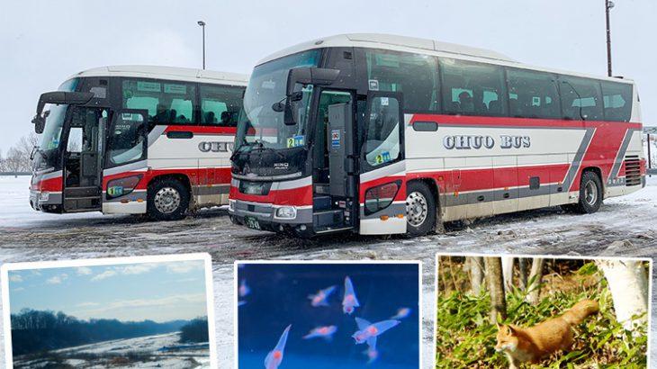 【北海道省钱交通提案】搭乘北海道高速巴士一次玩透网走・知床 | 景点・美食・住宿