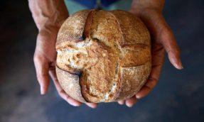 【东京必去】第12回「青山面包祭」集结来自全日本90家严选面包店